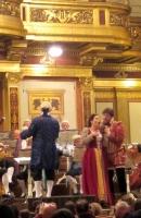 Vienna, Concert musicians