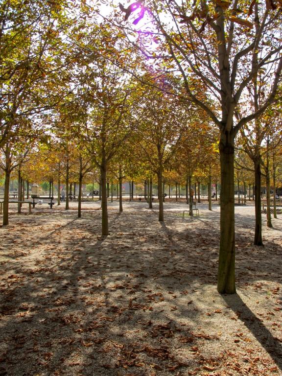 Paris   Sunday in the Park