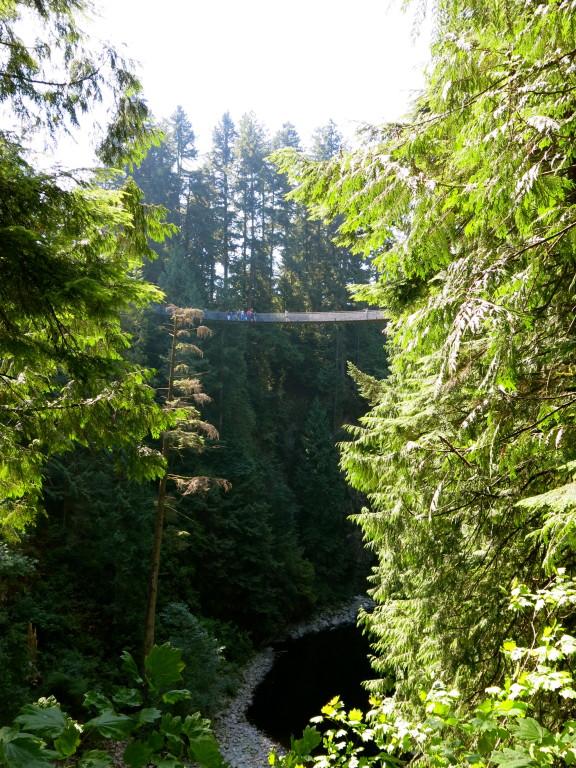 Vancouver | Nature's Design