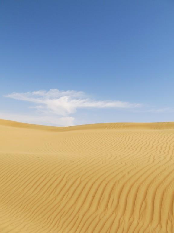DUBAI | DESERT DAY TRIP