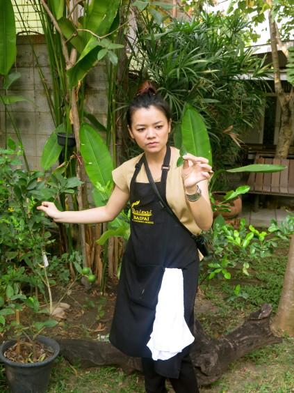 kaffir lime leaf_baipai cooking school_bangkok_thailand