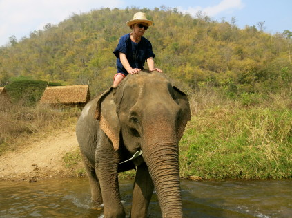 riding elephant_chaing mai_thailand